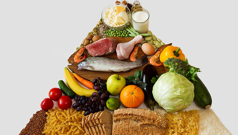 hvor kommer protein fra