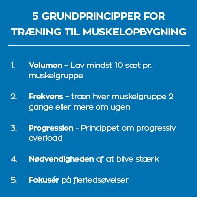 Kostplan og træningsprogram til muskelopbygning.