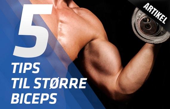 hvordan får man større biceps