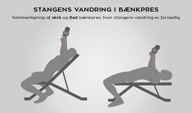 Infographic bryst træning