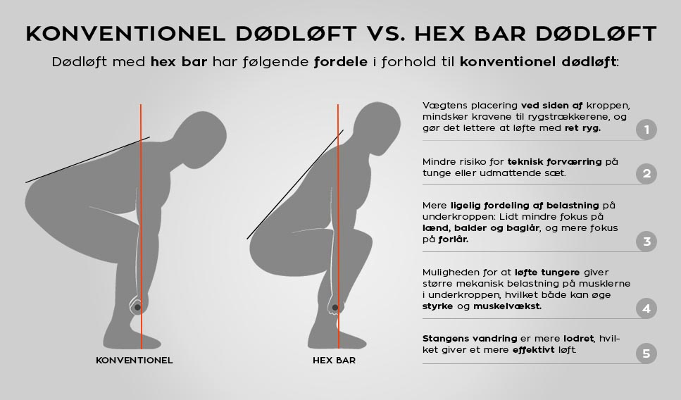 Infographic hex bar