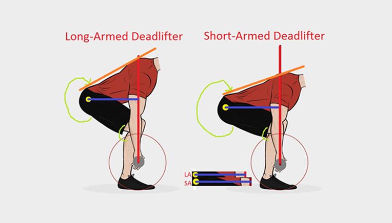startposition i dødløft med korte eller lange arme