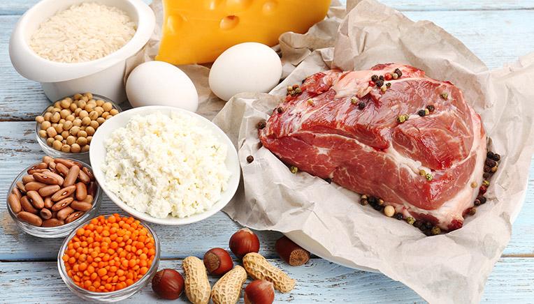 protein indtag pr dag