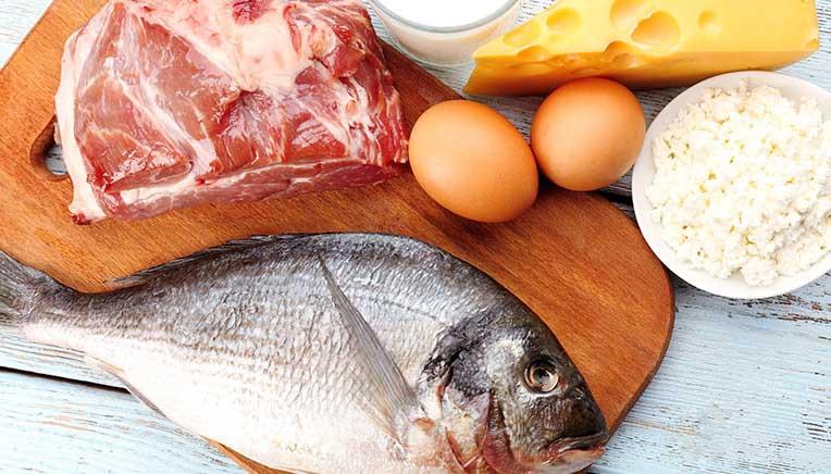 shop kostens protein