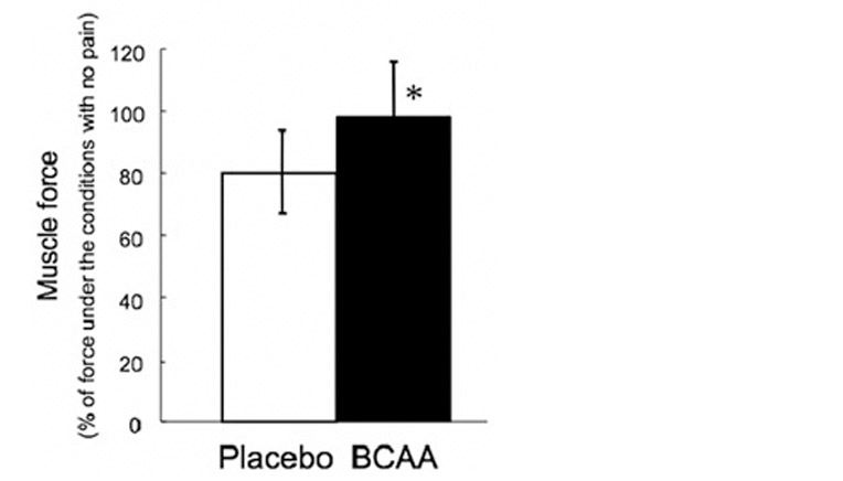 Figur over plcebo BCAA
