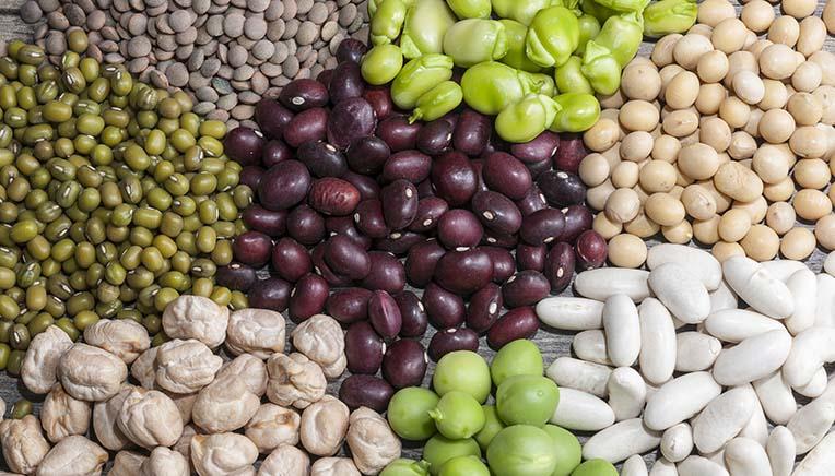proteinholdige grøntsager