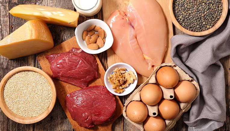 Hvad er protein