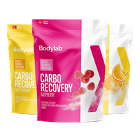 Bodylab Carbo Recovery (500 g)