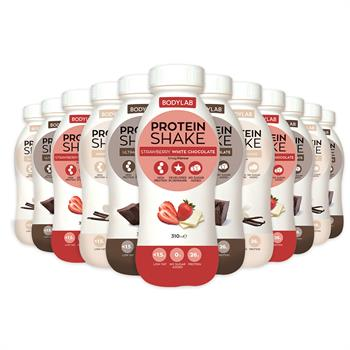 Protein Shake (12 x 310 ml)